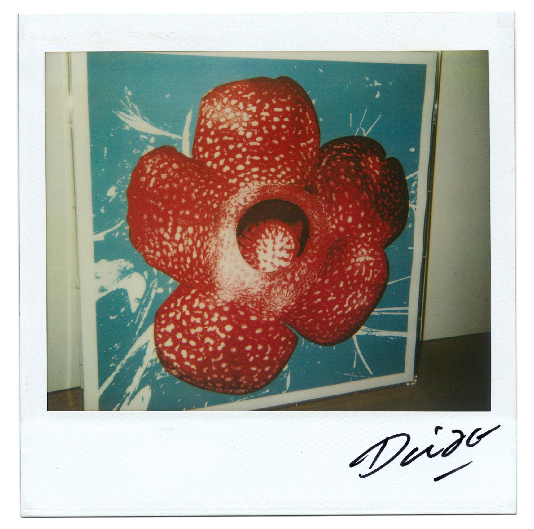 Moriyama Daido, bye-bye polaroid, 2008, Polaroid, 10 x 10 cm1