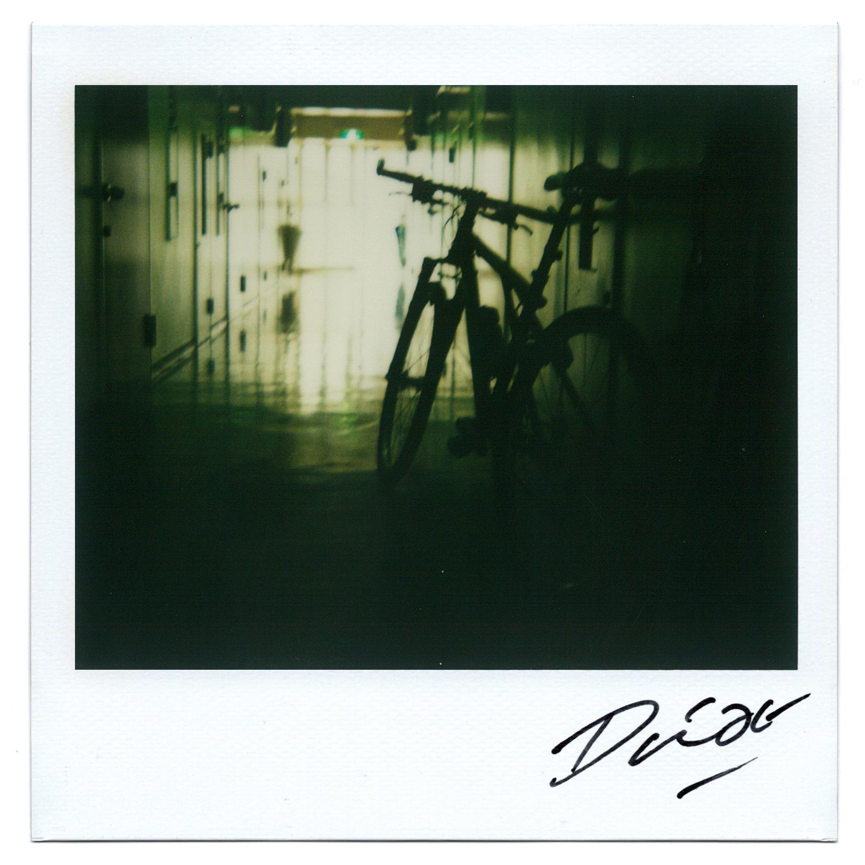 Moriyama Daido, bye-bye polaroid, 2008, Polaroid, 10 x 10 cm13